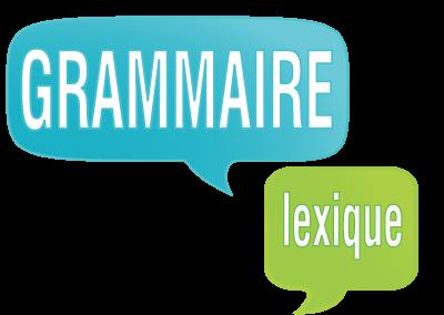 Grammaire et lexique